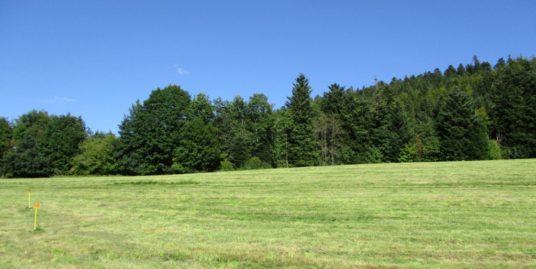 Vente terrain Hautes-Vosges